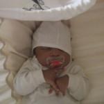 Wir suchen das NONOMO-Baby